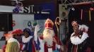 Sinterklaasfeest Schollevaar 2015_18